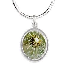 dandelion2 Silver Oval Necklace