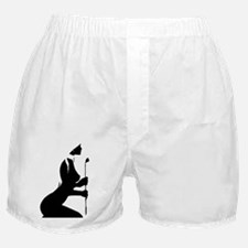 Masters Toy (Lt) Boxer Shorts