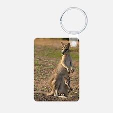 _DSC4084 Keychains