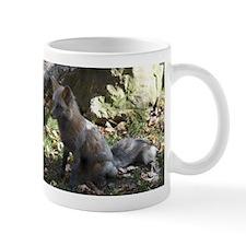 Gray Fox I Mug