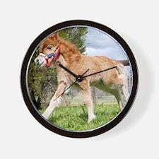 Orphaned Foal - Joy Wall Clock