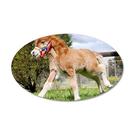 Orphaned Foal - Joy 35x21 Oval Wall Decal