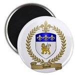 AMIOT Family Crest Magnet