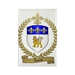 AMIOT Family Crest Rectangle Magnet (10 pack)