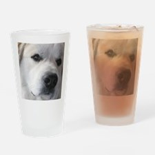 Great pyr Drinking Glass