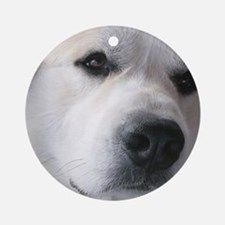 Great pyr Round Ornament