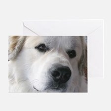 Great pyr Greeting Card