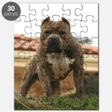 5minutes_vick_lgframed Puzzle