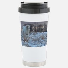 Great pyr Stainless Steel Travel Mug