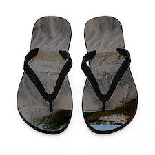 DSC_0182 Flip Flops