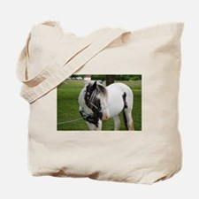 "Gypsy Vanner stallion ""Axel"" Tote Bag"