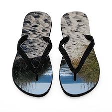 DSC_0095_2 Flip Flops