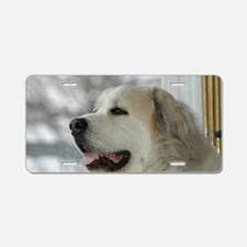 Great pyr Aluminum License Plate