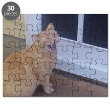 I Want In! Puzzle