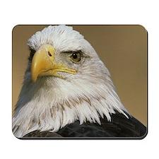 Eagle post Mousepad