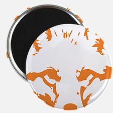 Fox Magnets
