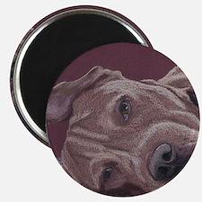 DogTired-square Magnet