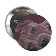 "DogTired-square 2.25"" Button"