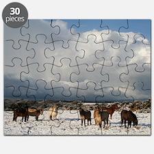 js 093 Puzzle