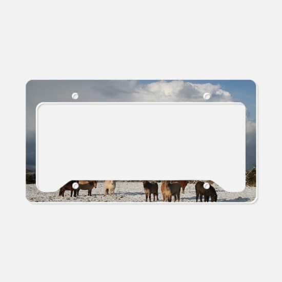 js 093 License Plate Holder