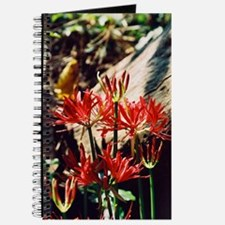 group lily Journal