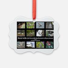 cover-2 Ornament