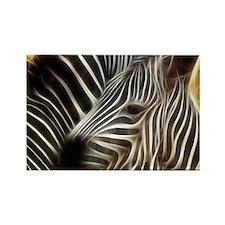 Zebra Love Rectangle Magnet