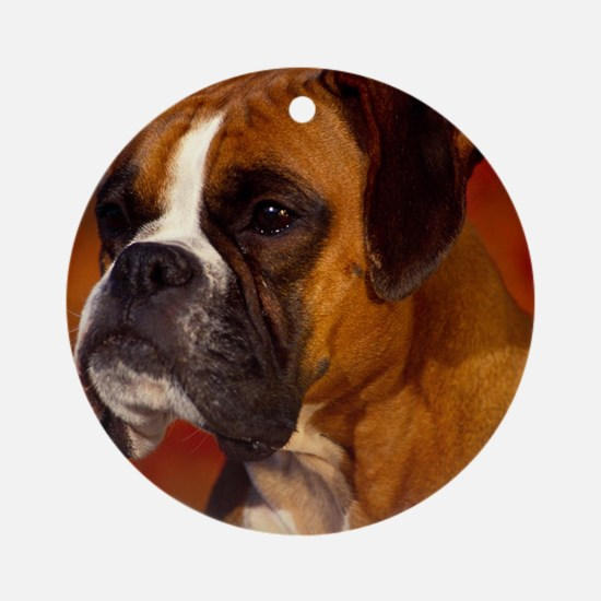 Boxer red pillow Round Ornament