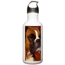 Boxer red journal Water Bottle