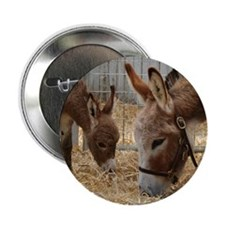 "Donkey and her Foal 2.25"" Button"