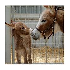 Newborn Donkey Foal Tile Coaster