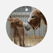 Newborn Donkey Foal Round Ornament