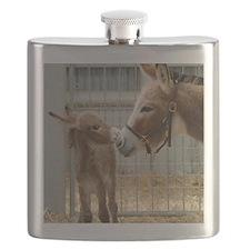 Newborn Donkey Foal Flask