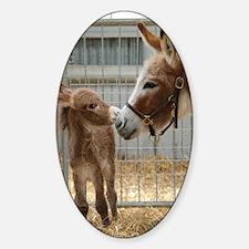 Newborn Donkey Foal Sticker (Oval)