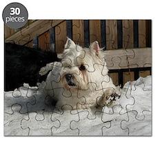 P1000020 Puzzle