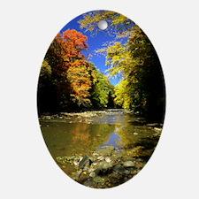 autumn river Oval Ornament