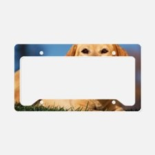 LabTB mousepad License Plate Holder