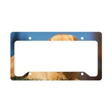 LabTB panel License Plate Holder