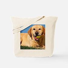 LabTB pillow Tote Bag