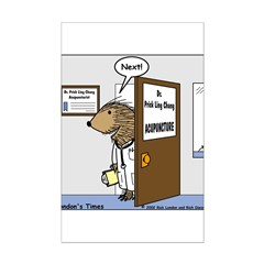 Porcupine Acupuncture Posters