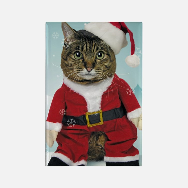 cpsanta_claws_stocking Rectangle Magnet