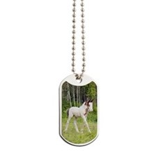 ic_6_pysty Dog Tags