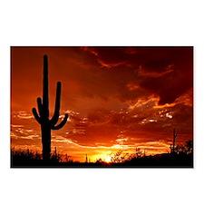 Saguaro Sunset-2 Postcards (Package of 8)