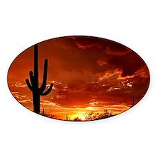 Saguaro Sunset-2 Decal