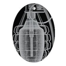 P1270156 Oval Ornament