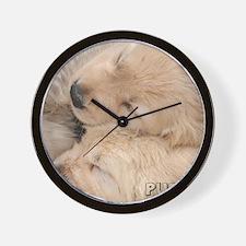 090409 008 Wall Clock