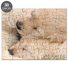 090409 008 Puzzle