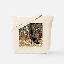 Boris fall sized Tote Bag