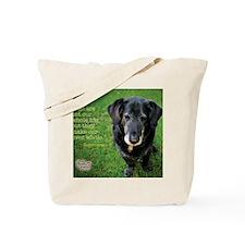 05MAY2011 Tote Bag
