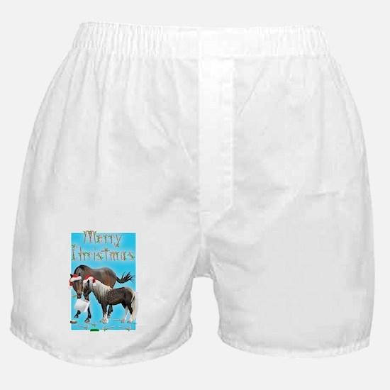 Caballo and Cisco Christmas Card Boxer Shorts